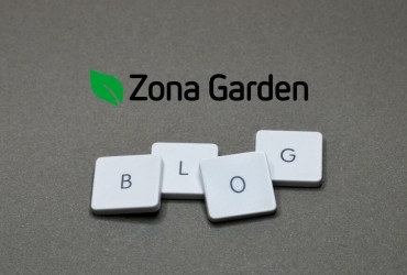 Apertura de Blog
